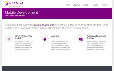 Screenshot of Services Page brxio.com - BRXIO Software - captured Oct. 5, 2014