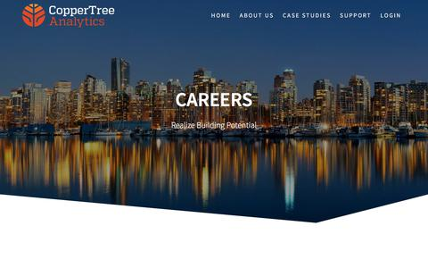 Careers – CopperTree Analytics