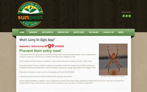Screenshot of Home Page sunpest.com - Sun Pest Management - Sun Pest Management | The Best in Weed & Pest! - captured Oct. 6, 2014