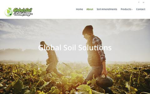 Screenshot of About Page gotogss.com - About – Global Soil Solutions - captured Aug. 14, 2017
