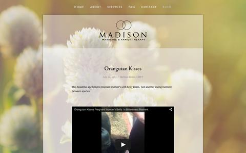 Screenshot of Blog madisonmft.com - Blog — Madison Marriage and Family Therapy - captured Feb. 4, 2016