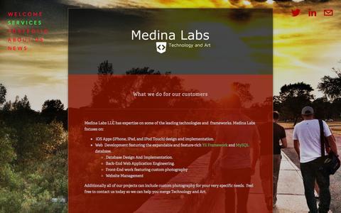 Screenshot of Services Page medinalabs.com - Services — Medina Labs - captured Oct. 27, 2014