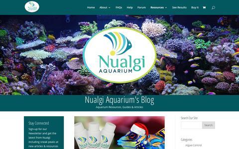 Screenshot of Blog nualgiaquarium.com - Blog - Nualgi Aquarium - captured Jan. 11, 2016