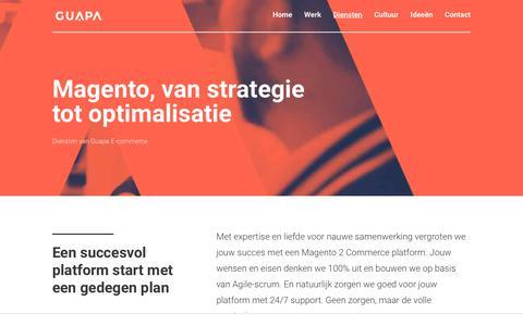 Screenshot of Services Page guapa.nl - Diensten » Guapa E-commerce - captured Nov. 1, 2018