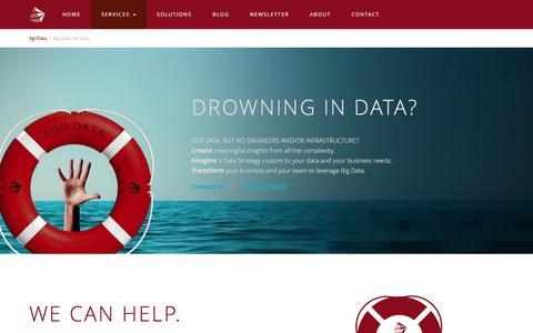 Screenshot of Services Page agildata.com - Big Data Services - AgilData - captured Feb. 18, 2016