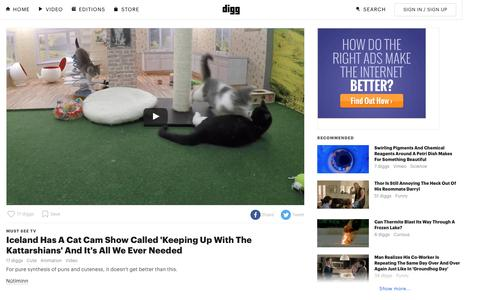 Screenshot of digg.com - Iceland Has A Cat Cam Show Called 'Keeping Up With The Kattarshians' And It's All We Ever Needed - Digg - captured Feb. 24, 2017