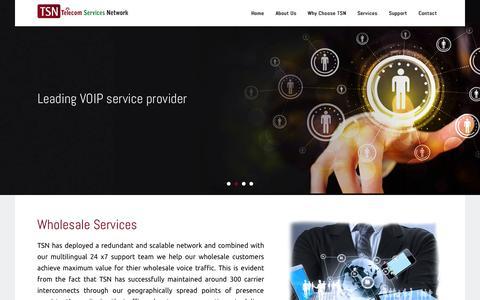Screenshot of Home Page telservnet.com - Telecom Services Network - captured Sept. 1, 2015