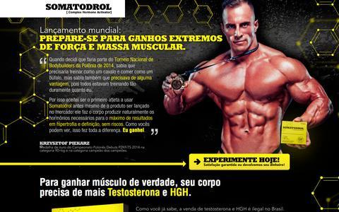 Screenshot of Home Page somatodrol.com.br - Somatodrol - captured Sept. 22, 2014