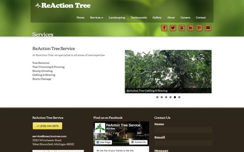Screenshot of Services Page reactiontree.com - Professional Tree Services  | ReAction Tree Service - captured Nov. 12, 2017