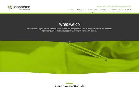 Screenshot of Services Page cadensee.com - What we do - CadenSeeCadenSee - captured Oct. 5, 2014