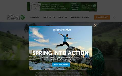 Screenshot of Home Page nature.org - Nature Conservancy | Protecting Nature, Preserving Life - captured April 1, 2016