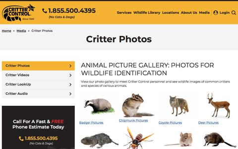 Screenshot of Press Page crittercontrol.com - Wildlife Images: Photo Gallery with Pictures of Animals - captured Dec. 22, 2019