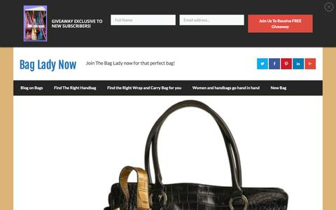 Screenshot of Contact Page bagladynow.com - Bag Lady Now | Bag Lady Now - captured Nov. 27, 2018