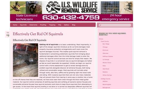 Screenshot of Blog pestsquirrelremoval.com - Squirrel trapping blog | Nuisance Squirrel Control - captured April 9, 2016