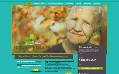 Screenshot of Home Page blossomridge.net - Blossom Ridge Home Health Agency - captured Oct. 5, 2014
