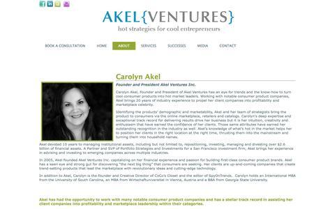 Screenshot of Team Page akelventures.com - TEAM - captured Feb. 5, 2016