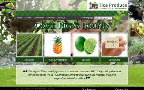 Screenshot of Home Page ticaproduce.com - Tica-Produce - captured Oct. 8, 2017