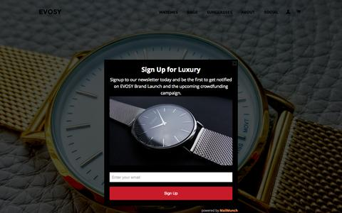 Screenshot of Home Page evosy.com - EVOSY Affordable Luxury Accessories - captured Oct. 14, 2015