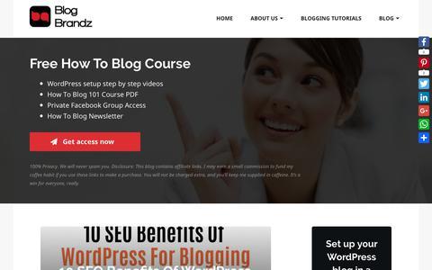 Screenshot of Blog blogbrandz.com - Social Media Tips from Blog Brandz - captured Dec. 16, 2018