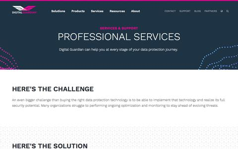 Professional Data Protection & Information Security Consulting Services | Digital Guardian