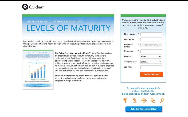 Sales Execution Maturity Model | Qvidian