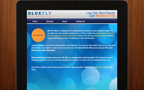 Screenshot of Services Page blueflyweb.com - Web Marketing Services NY   Online Marketing New York - captured Oct. 5, 2014