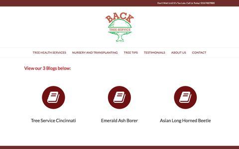Screenshot of Blog backtree.com - Blog - Back Tree Service - captured June 18, 2016
