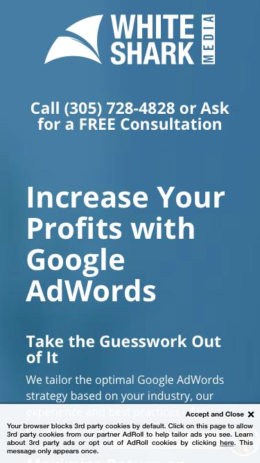 Increase Your Profits with Google AdWords - AdWords Management Agency and SEO Services, Simplified