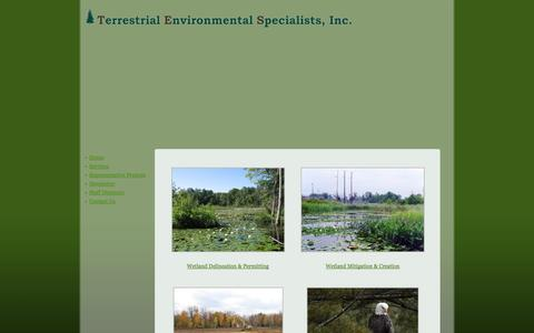 Screenshot of Services Page tesenvironmental.com - Services - captured Oct. 26, 2014