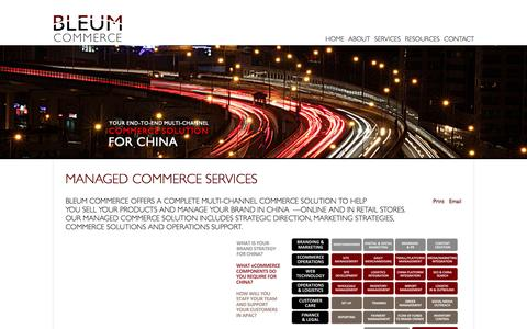 Screenshot of Services Page bleumcommerce.com - Services - captured Sept. 30, 2014