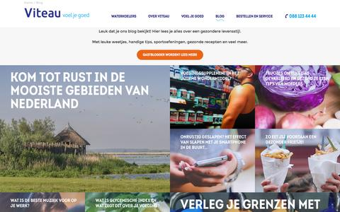 Screenshot of Blog viteau.nl - Blog | Viteau - Voel je goed - captured Feb. 25, 2016