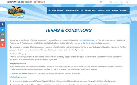 Screenshot of Terms Page goflippersgo.com - Terms & Conditions - captured May 1, 2017