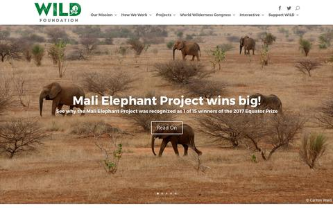 Screenshot of Home Page wild.org - WILD Foundation | Protecting through connecting: wilderness, wildlife & people - captured Oct. 24, 2017