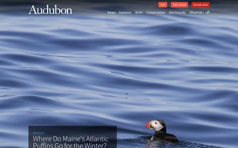 Screenshot of Home Page audubon.org - National Audubon Society - captured Feb. 16, 2016