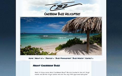 Screenshot of About Page caribbean-buzz.com - About Caribbean Buzz Helicopters - captured Jan. 25, 2016