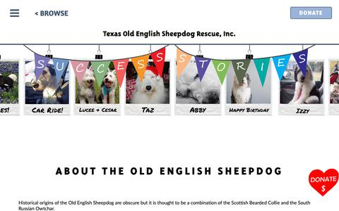 Screenshot of FAQ Page texasoesrescue.org - About OES Breed - captured Oct. 21, 2018