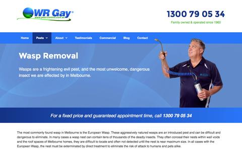 Wasp Removal & Control in Melbourne | WR Gay