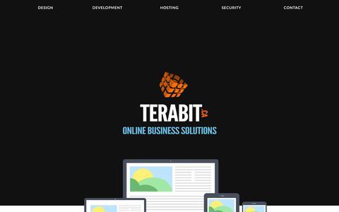 Screenshot of Home Page terabit.ca - Ottawa Web Developer - Terabit.ca - captured March 2, 2016