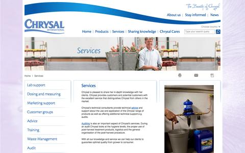 Screenshot of Services Page chrysal.com - Services - captured Oct. 2, 2014