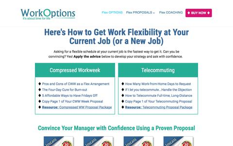 Screenshot of workoptions.com - Flexible Work Arrangements: Know Your Work Options - captured Nov. 24, 2017