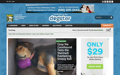 Screenshot of Home Page dogster.com - Dogs - Dogster - captured Oct. 7, 2015