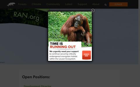 Screenshot of Jobs Page ran.org - Jobs at RAN - Rainforest Action Network - captured Dec. 5, 2018