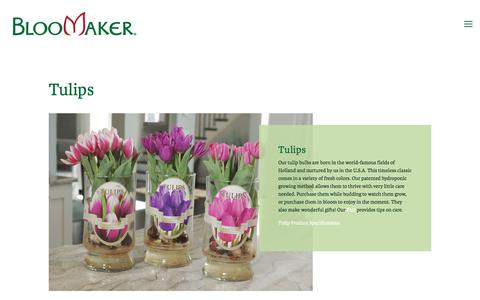 Screenshot of Products Page bloomaker.com - Products — Bloomaker - captured Aug. 2, 2018