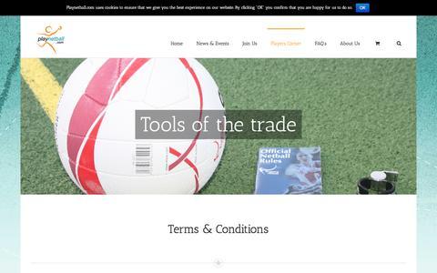Screenshot of Terms Page playnetball.com - Terms & Conditions - playnetball - captured Feb. 2, 2016