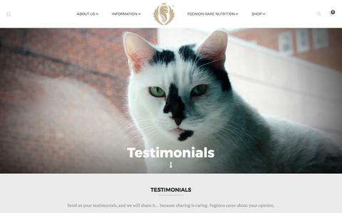 Screenshot of Testimonials Page fegnion.com - Testimonials - Fegnion.com - captured Oct. 13, 2017