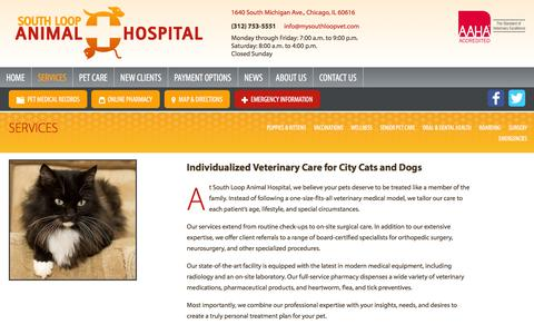 Screenshot of Services Page mysouthloopvet.com - Veterinary Services by Dr. Manrique and Dr. Sanchez at | South Loop Animal Hospital, Chicago, IL - captured June 25, 2016