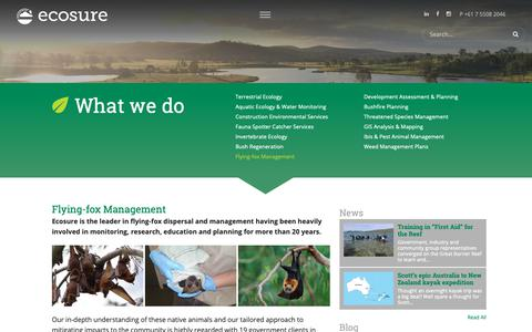Screenshot of Services Page ecosure.com.au - Flying-fox Management - Ecosure - captured Dec. 7, 2018