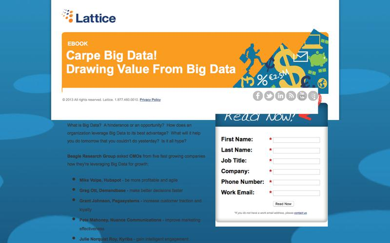 Carpe Big Data! Drawing Value From Big Data