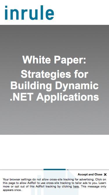 InRule White Paper - Strategies for Building Dynamic .NET Applications