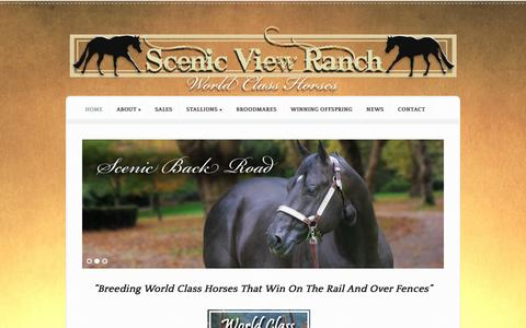 Screenshot of Home Page svranch.com - Scenic View Ranch | World Class Horses - captured June 23, 2016